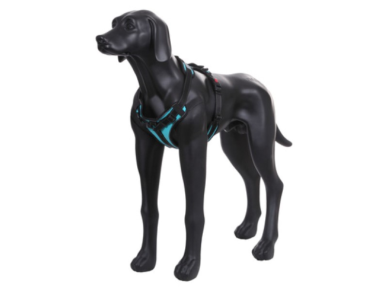 SOLID HARNESS TURQUOISE